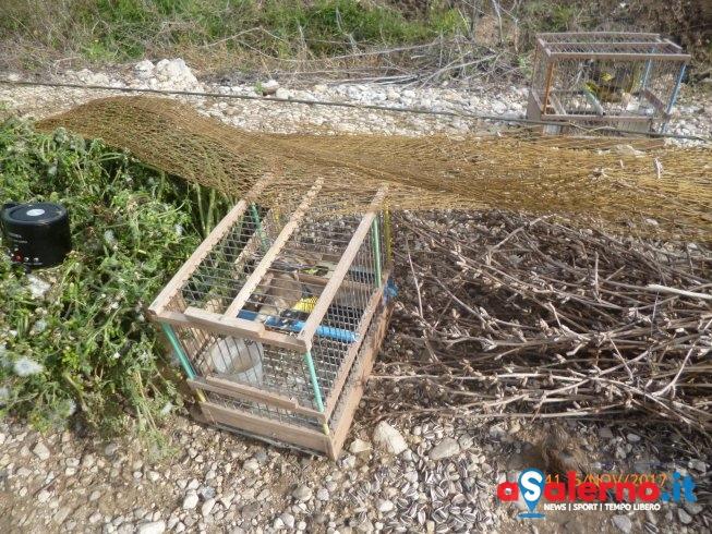 Operazione anti-bracconaggio alla Foce del Sele – LE FOTO - aSalerno.it