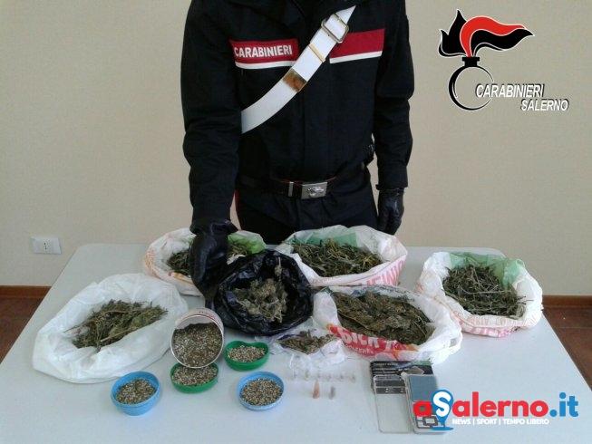 Un market di marijuana: arrestati marito e moglie – FOTO - aSalerno.it
