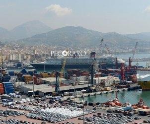 Salerno porto  commerciale settore sbarco e imbarco merci Attracco nave da crociera Disney