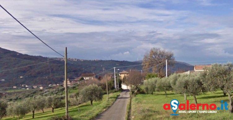 """Furti da """"contadino"""" ad Albanella: rubati formaggi, salumi e animali da cortile - aSalerno.it"""