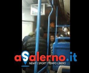 video autobus