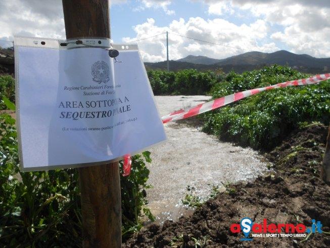 Paestum, sversamento di rifiuti zootecnici: sequestrata area di 500 mq - aSalerno.it