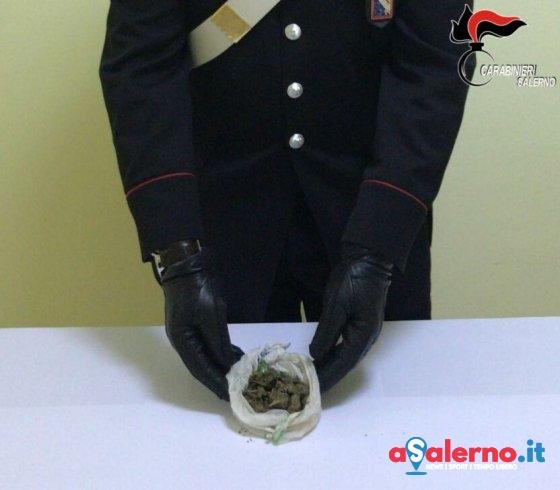 Sorpreso in villa con la marijuana, 22enne ai domiciliari - aSalerno.it