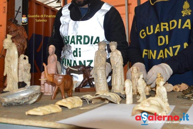 Maxisequestro al porto di Salerno: avorio, pelli di pitone e un'anfora fenicio-punica - aSalerno.it