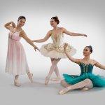 Licenziande Ballet Art 1