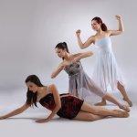 Licenziande Ballet Art 2
