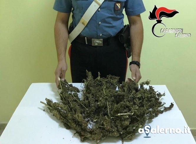 Fidanzati spacciatori: fermati in macchina con un chilo di marijuana - aSalerno.it
