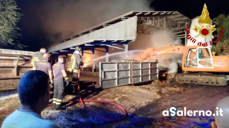 Incendio in un fienile a Roccadaspide, 700 balle di fieno a fuoco – VIDEO - aSalerno.it