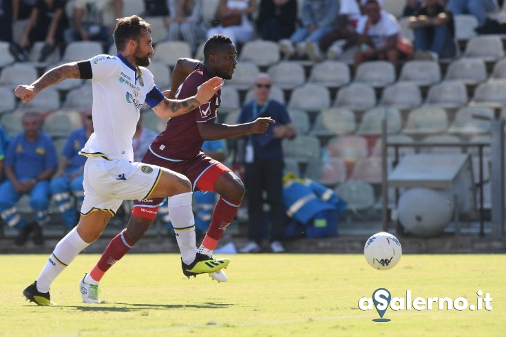 Salernitana-Hellas Verona: le pagelle - aSalerno.it