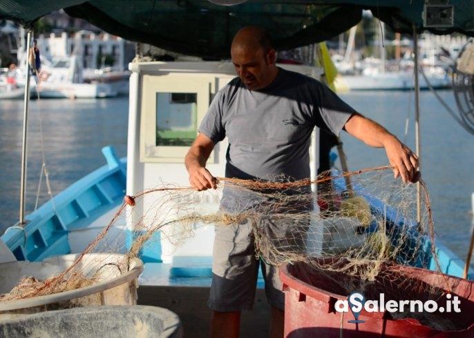 Camerota, festa del mare e dei pescatori: l'invito in uno spot – VIDEO - aSalerno.it