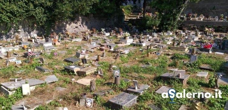 Erba incolta e lapidi rotte al cimitero degli animali, l'appello – FOTO - aSalerno.it