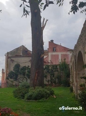 Ravello, fulmine colpisce un pino al Belvedere: strada chiusa - aSalerno.it