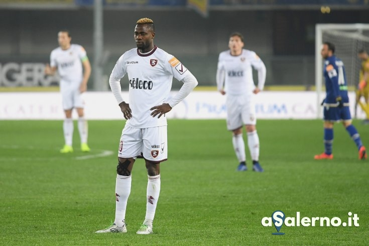 Hellas Verona-Salernitana: le pagelle - aSalerno.it
