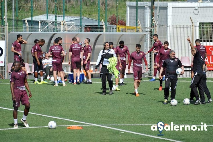 Salernitana-Carpi, i convocati: non c'è Mantovani - aSalerno.it