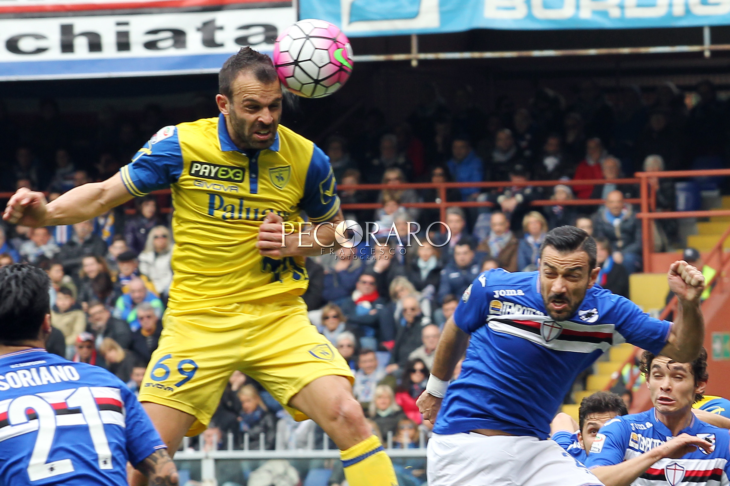 "20 03 2016 Sampdoria vs Chievo Campionato di Calcio Serie A TIM 2015/2016 - Stadio ""Luigi Ferraris"""