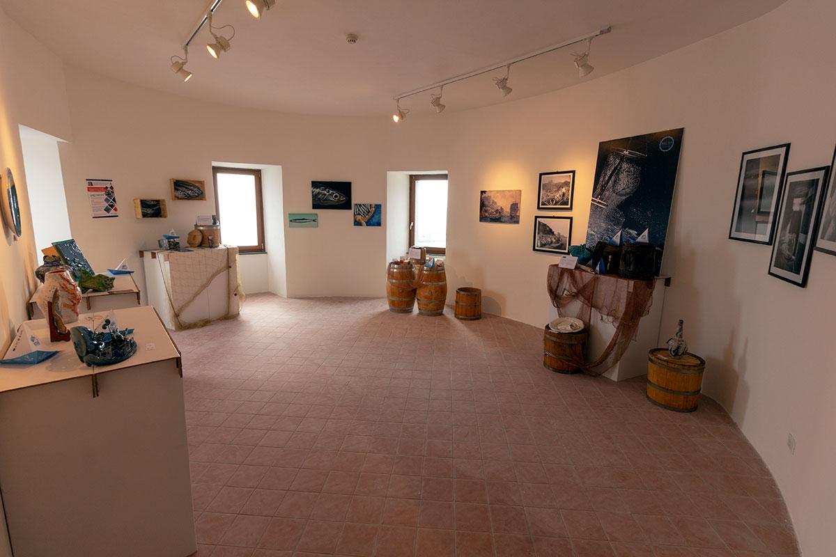 museocolatura1