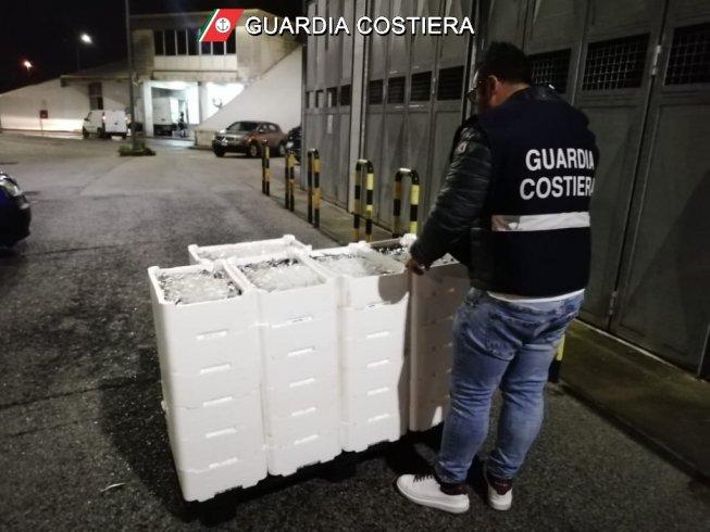 Salerno, controlli a tappeto al Mercato Ittico - aSalerno.it