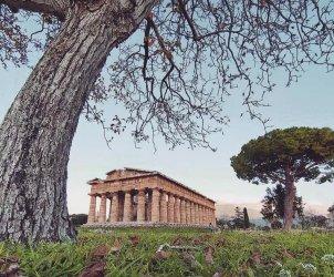 Parco Archeologico Paestum