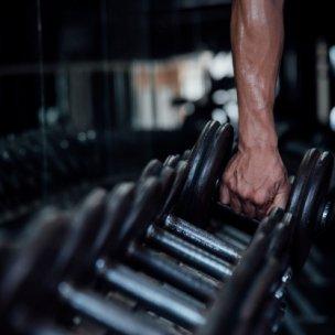 gym palestra