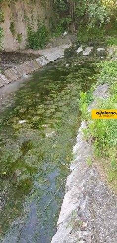Scarichi abusivi nell'Irno, scoperte tre persone ad Acquamela - aSalerno.it