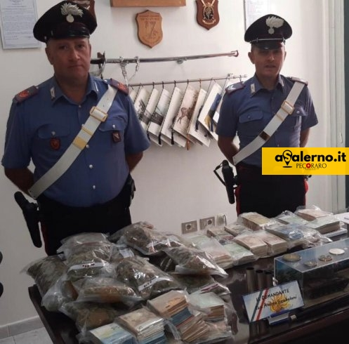 Baronissi, scoperto un laboratorio per la marijuana con 190 piante - aSalerno.it