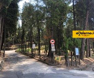 ingresso Parco Pineta S Anna Giffoni Sei Casali