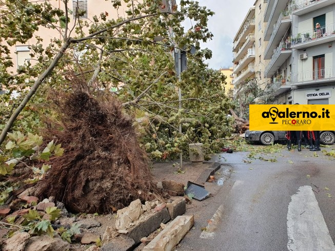 Maltempo Salerno, emergenza e danni: Piero De Luca chiederà stato di calamità naturale - aSalerno.it