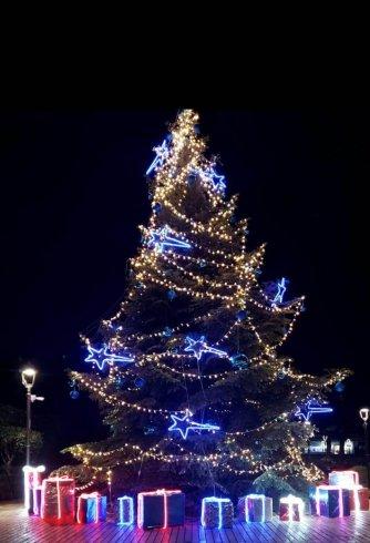 Si illumina il Natale a Baronissi: in ogni frazione il simbolo della festa - aSalerno.it