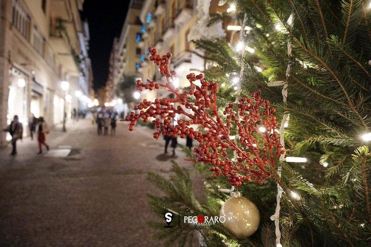 Primo weekend per gli alberi di Natale a Salerno - aSalerno.it