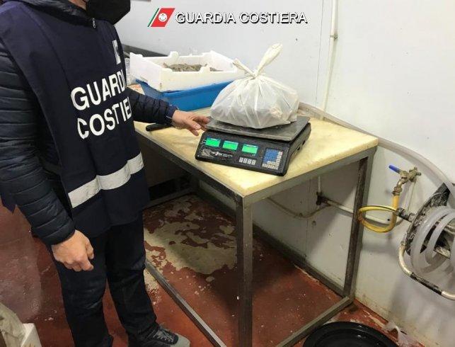 Prodotto ittico senza tracciabilità, sequestro della Guardia Costiera - aSalerno.it