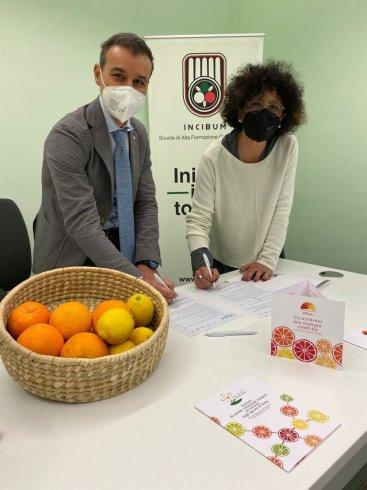 Filo diretto con Catania, importante partnership Fmts e Distretto Agrumi di Sicilio - aSalerno.it