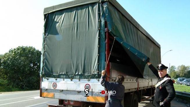 Nascosti in un camion che trasportava divani, fermati quattro clandestini - aSalerno.it