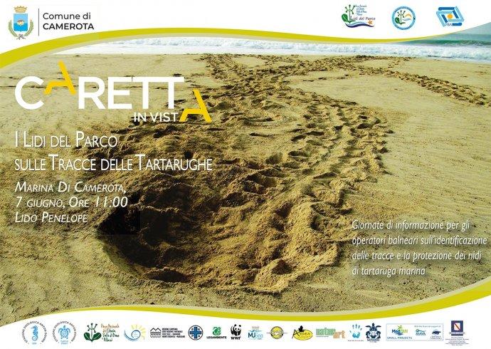 I Lidi del Parco Cilento per la tutela dei nidi di tartaruga marina - aSalerno.it