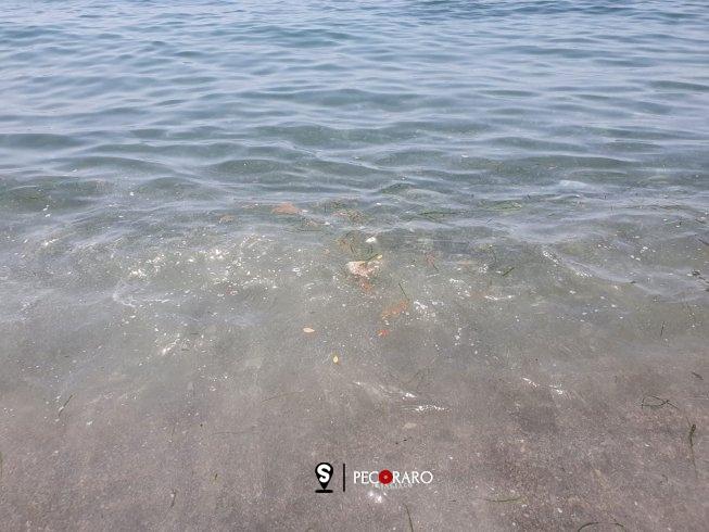 "Mare sporco alla ""Baia"" a Salerno, bagnanti furiosi - aSalerno.it"