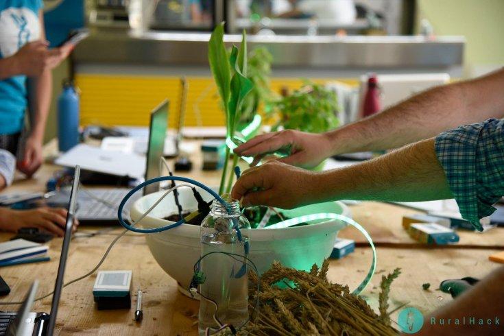 Dieta Mediterranea, un modello per l'innovazione con Pidmed: tre giorni di formazione - aSalerno.it