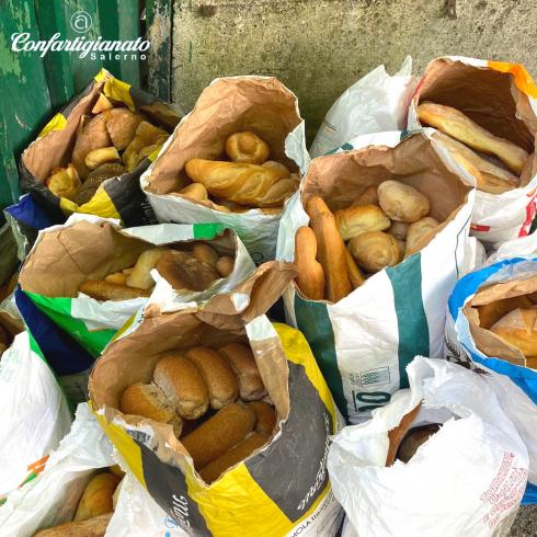 Consegnati 30 sacchi di pane raffermo alla Lega Nazionale per la Difesa del Cane - aSalerno.it