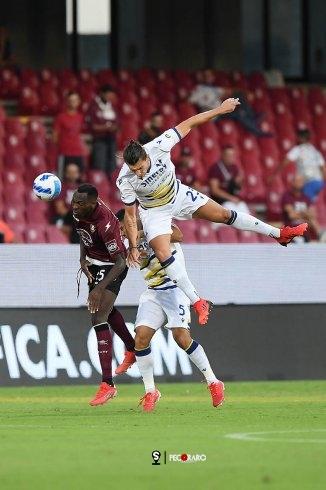 Salernitana non mollare. Doppio Kalinic, accorcia Gondo: 2 a 1 Verona (pt) - aSalerno.it